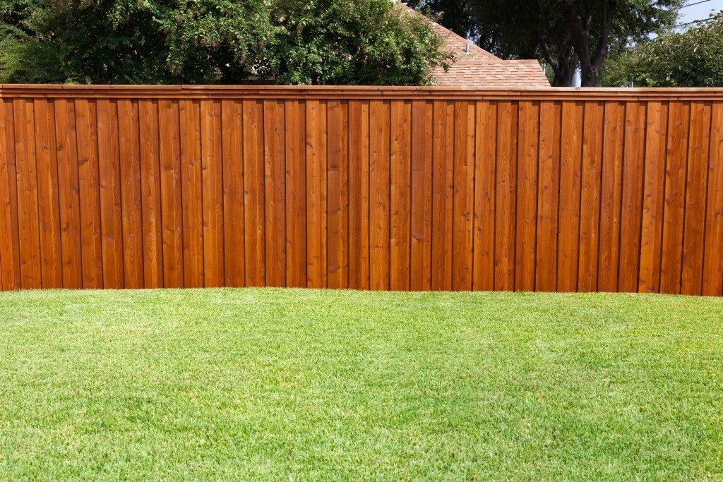 Wooden fence in backyard