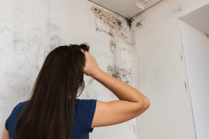 mold on the ceiling