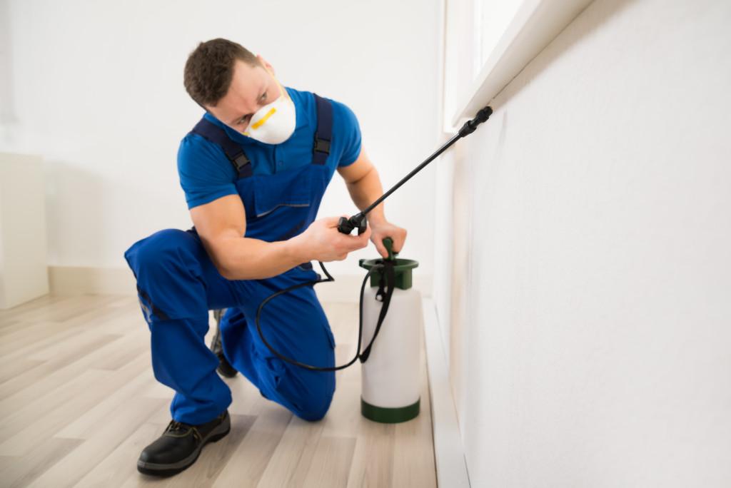 man spraying pesticide