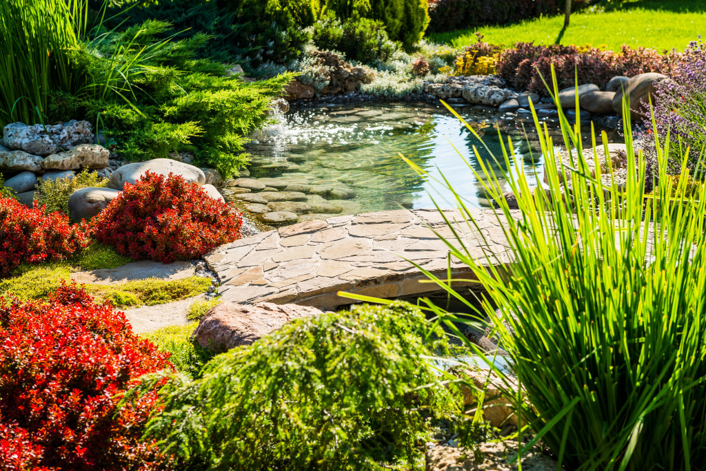garden with a pond