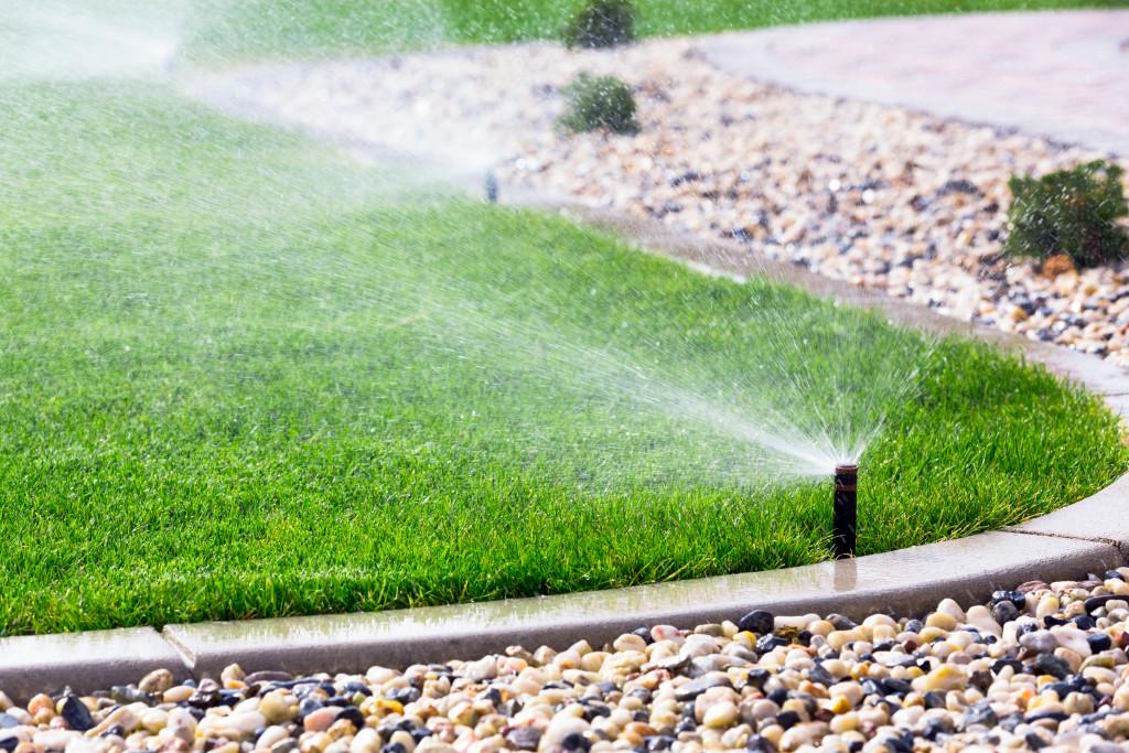 watering backyard