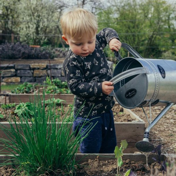 Essential Pointers for Teaching Your Kids How to Garden
